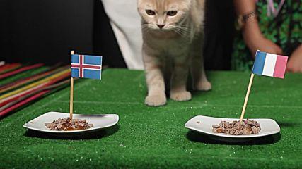 Ще сътвори ли Исландия чудо?!