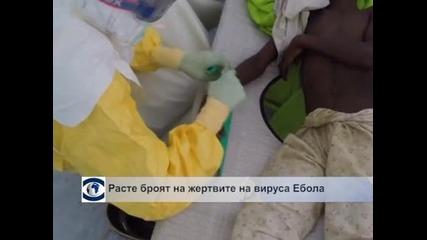 Расте броят на жертвите на вируса Ебола