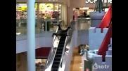 Лудак се спуска по парапета на ескалатор ...
