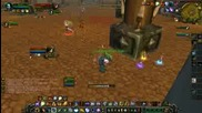 Wow Arena Tournament 2v2 arena Rogue Eleshaman