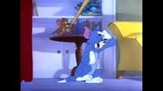 Tom & Jerry  -  Nit - Witty Kitty