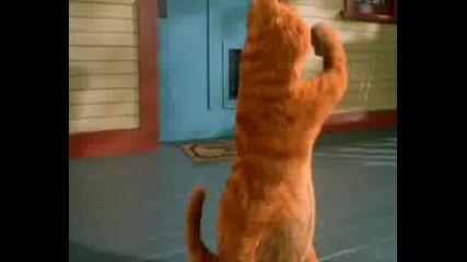 Garfield - I Feel Good