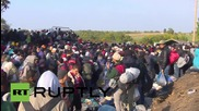Serbia: Huge influx of refugees continue their journey as camps continue to grow