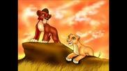 цар лъв-картинки 2