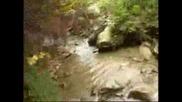 Лов На Диво Прасе В Етрополе (1част)