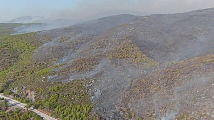 Turkey: Drone shows Bodrum engulfed in smoke amid efforts to fight wildfires