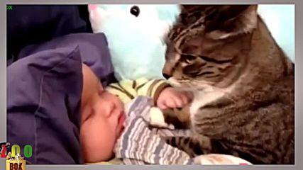 Най-сладките животинки и бебета