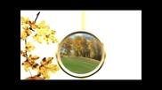 Smilja Mitrevska - Zaplaci Nebo