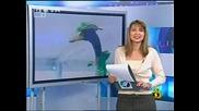 Господари На Ефира - Репортерки Стават За Смях!!!11/04/2008
