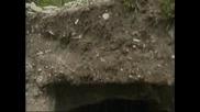 Археология Находки Край Шумен