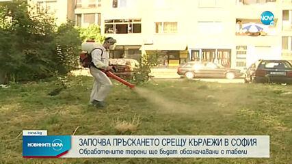 Започва пръскането срещу кърлежи в София