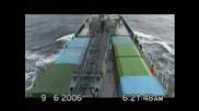 Океанографски международни състезателни гълъби - 2
