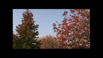 Есента Чука На Вратата