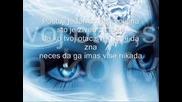 Sinan Sakic - Jesi li srecna ljubavi
