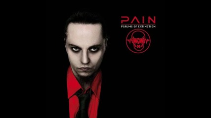 Pain - Im Going In (превод)
