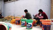 'Persimmon-village' in China prepares for upcoming drying season