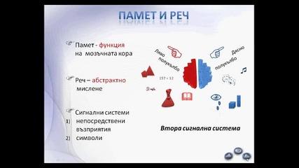 Нервна система - презентация