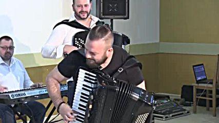 Borko Radivojevi i orkestar Gorana Todorovia - Tigar kolo