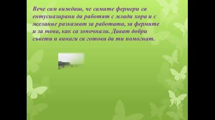 Нордик Стриймърс -