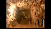 Мексиканската армия разкри тунел под границата със САЩ