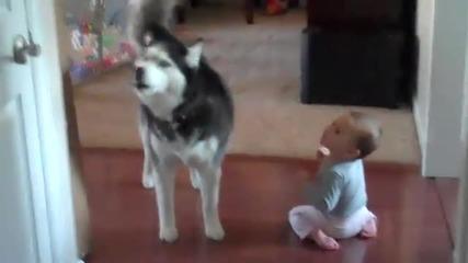хъски и бебе си говорят :)