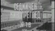 Нетинфо - кинопреглед 2012