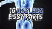 10 безполезни части на тялото