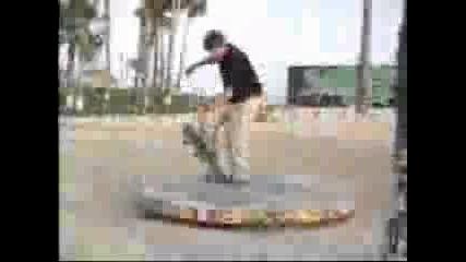 Skateboarding - Pro