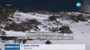 Боян Петров пред NOVA: Изкачих последните метри от Гашербрум със случайно намерено въже