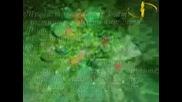 Магията На Зеленото И Какво Ни Разкрива То