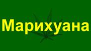 Единайсет целебни свойства на марихуаната
