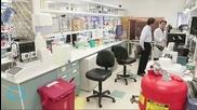Thousand-year-old Anglo-Saxon Potion Kills Superbug