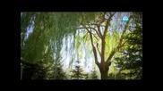 Прости ми - (beni Affet) 155 еп. бг аудио