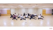 Seventeen - Dont Wanna Cry ( Choreography Video Front Ver. )