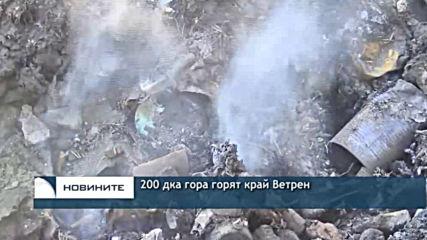 200 дка гора горят край Ветрен
