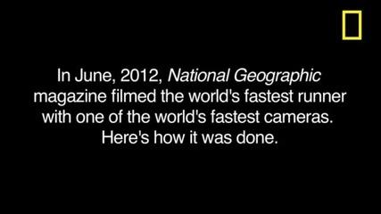 Ето как се снима най-бързото животно в света