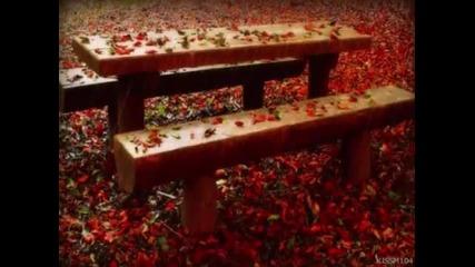 Музика за душата - Есенна мелодия + любовна лирика