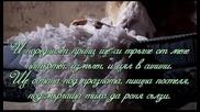 Аз съм грахчето - Радост Даскалова