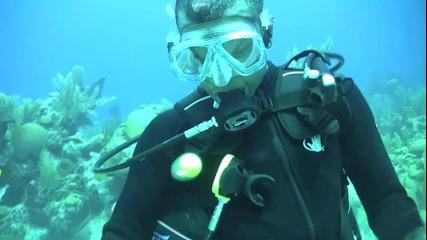 Яйце под водата