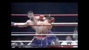 k1 knockouts