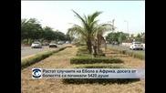 Растат случаите на Ебола в Африка, смъртните случаи са 5420