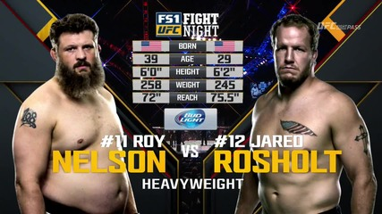 Roy Nelson vs Jared Rosholt (ufc Fight Night 82, 06.02.2016)