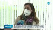 Започнаха масови ваксинации на сезонните работници в туризма по Черноморието