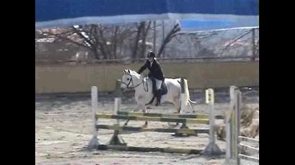 Тодоровден 2011-конна база Виница