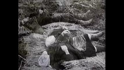 9 Май - Великата отечествена война