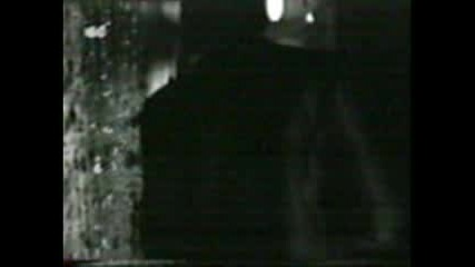 Whitesnake - Too Many Tears