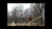 Czeslaw Niemen - Wspomnienie