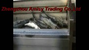 Fish Scaling Machine, Fish Descaling with High Capacity