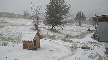 """От """"Моята новина"""": Сняг вали в момента в Перник"""