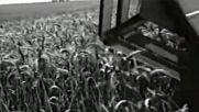 Жътва ( 1982 г ) - Документален филм